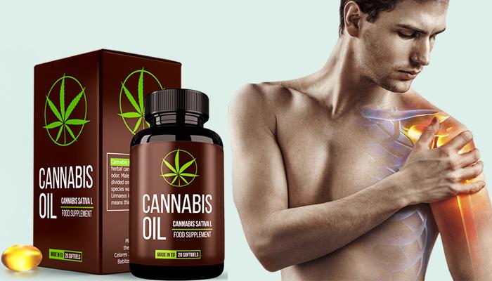 Cannabis Oil: Stellt es Knorpelgewebe und Gelenke wieder her