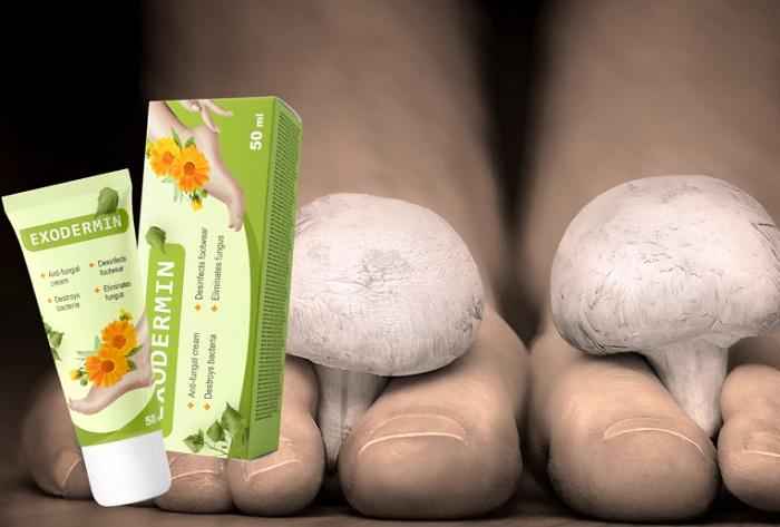 Exodermin von Fuß-und Nagelpilz: vernichtet Fußpilz in 4 Wochen!