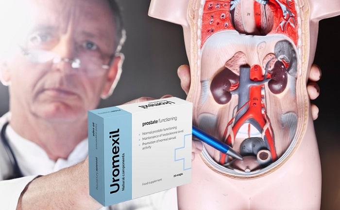 Uromexil von Prostatitis: Beseitigung von Anzeichen einer Prostatitis ohne Verlassen der Komfortzone!
